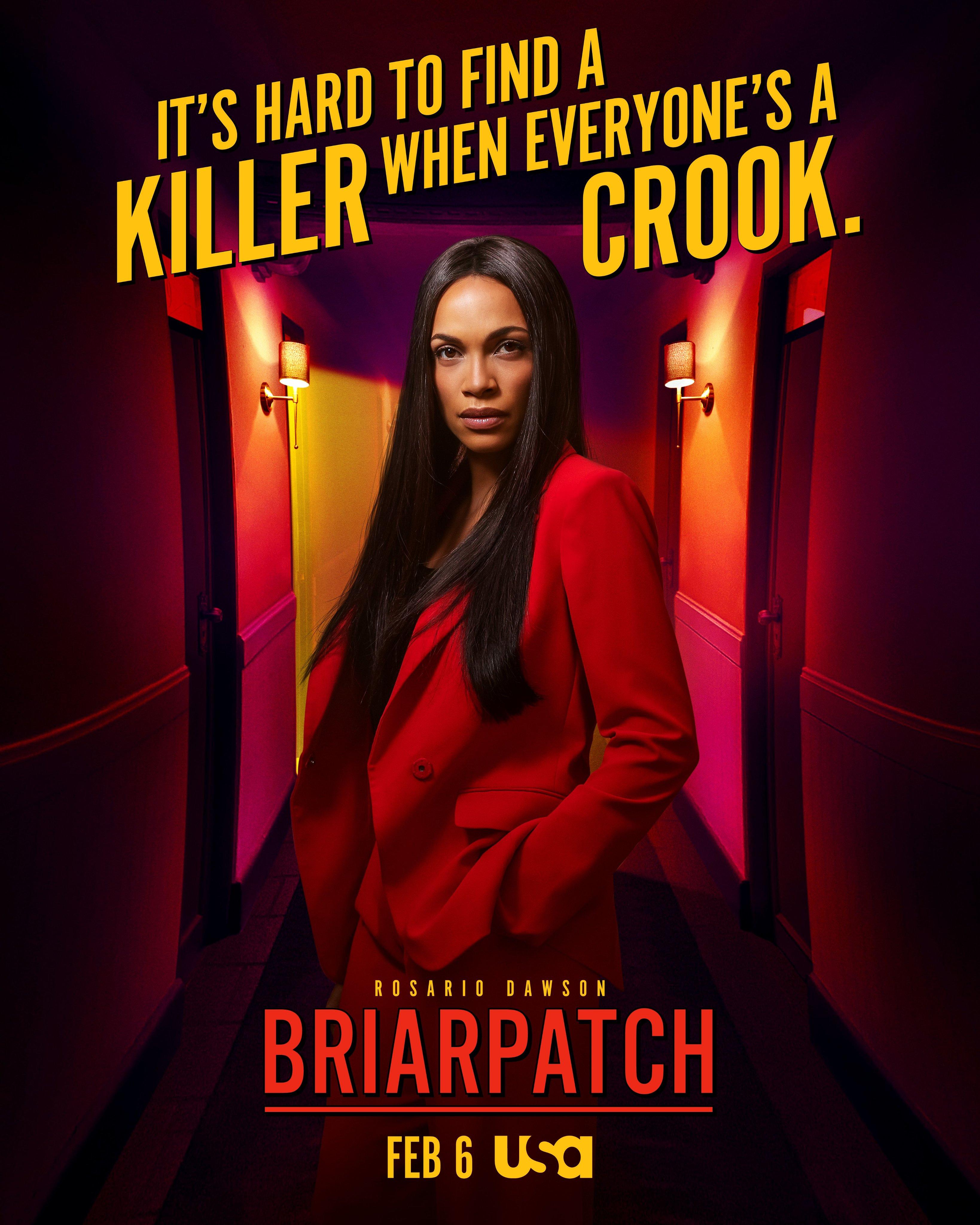 Briarpatch (έως S01E03)