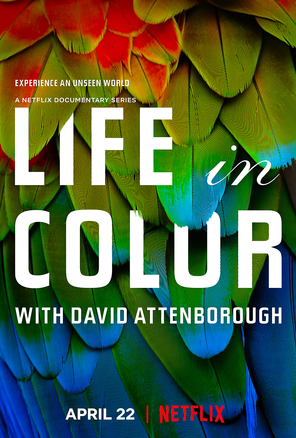 Life in Colour (S01)